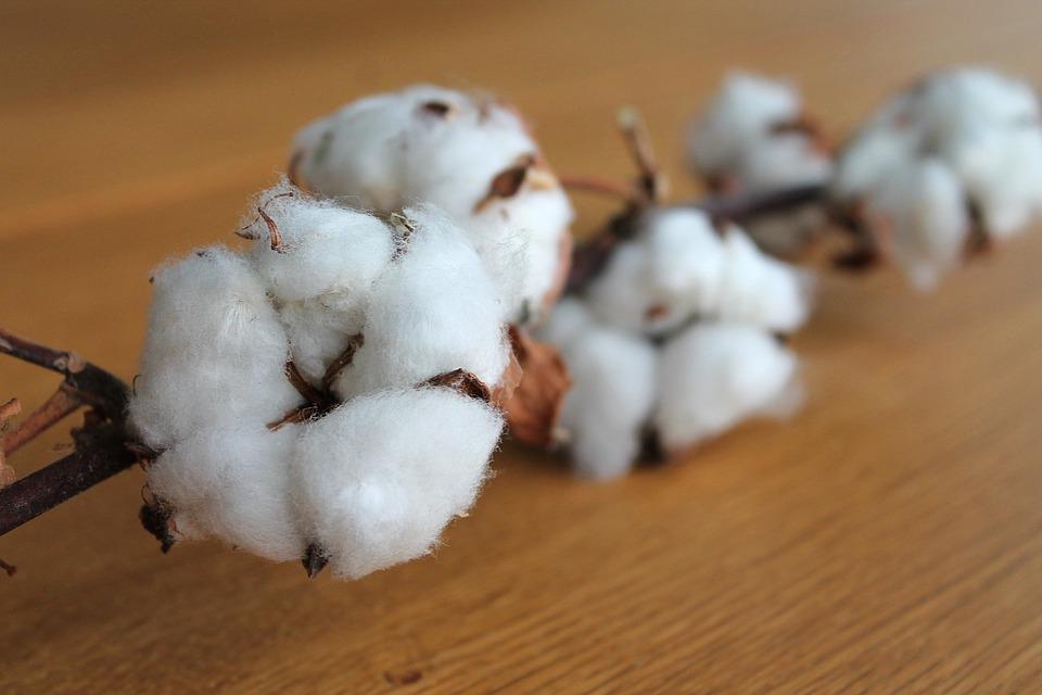 Tejido de algodon